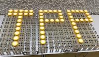 Платформа для биореакторов TPP TubeSpin 50 мл, вместимостью 162 (18x9), подходит для шейкеров Kuhner ISF1-X, ISF4-X. НОВИНКА!!!